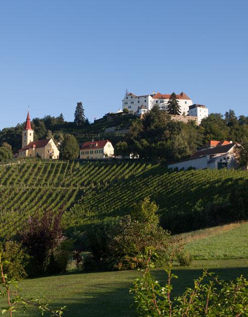 Weinabo-Abothek-Wein-Kistl-Mai-2020-Planet-Vulkanland-Weinhof-Fauster-Sauvignon-Blanc-Vulkanland-Steiermark-DAC-2019-Bild-@Winzer-Vulkanland-Steiermark-Kapfenstein-shop_web