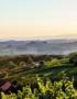 Weinabo-Abothek-Wein-Kistl-Mai-2020-Planet-Vulkanland-Weinhof-Fauster-Sauvignon-Blanc-Vulkanland-Steiermark-DAC-2019-Bild-@Winzer-Vulkanland-Steiermark-Straden-shop_web