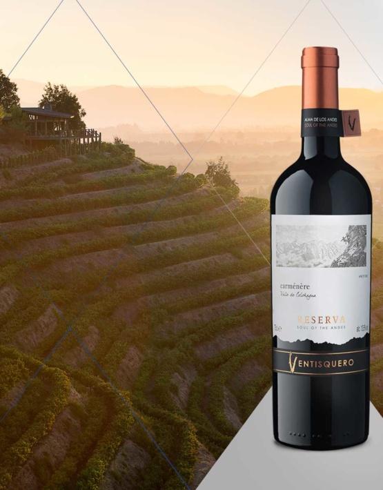Weinabo-Abothek-Jaenner-Kistl-2019-Neue-Welt-Carmenere-Flasche-Valle Colchagua_web