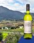 Weinabo-Abothek-Jaenner-Kistl-2019-Neue-Welt-Chenin-Blanc-Flasche-Landschaft_web