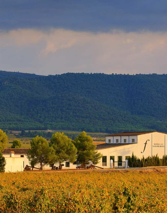 Weinabo-Abothek-Februar-Kistl-2019-Valencia-Casa-Los-Frailes_web