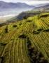 Weinabo-Abothek-Maerz-Kistl-2019-Wachau-Machherndl-Riede-Kollmitz-web