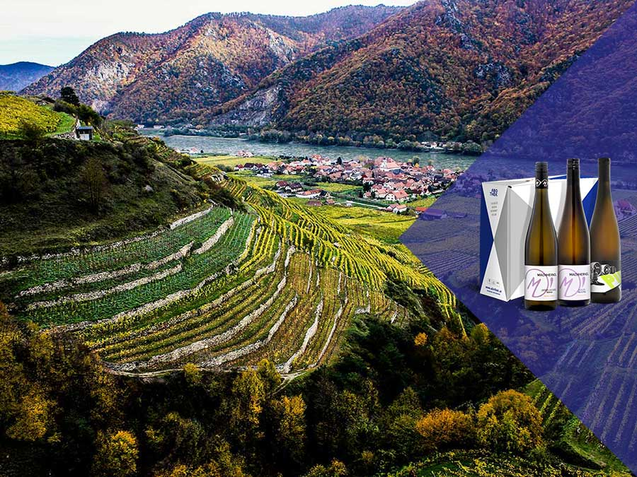 Weinabo-Abothek-Maerz-Kistl-2019-Wachau-Machherndl-Kistl-Keil-Woesendorf-Foto-Robert-Herbst-POV