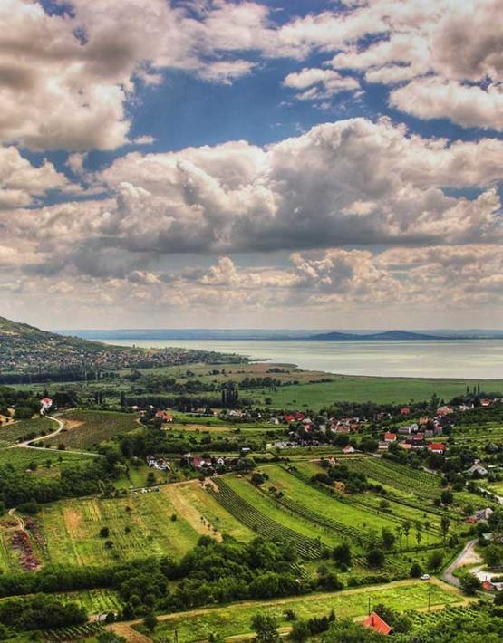 Weinabo-Abothek-Juni-2019-Ungarn-Balaton-Zelna-Balaton-Aussicht-Foto-txd-CC-BY-2.0-web