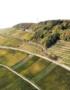 Weinabo-Abothek-Oktober-2019-Deutsche-Weinheit-Zotz-Gutedel-Weisser-Burgunder-Weingarten_web
