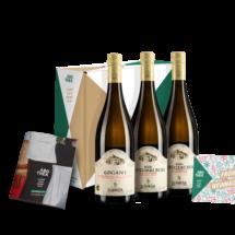 Abothek-Weinabo-Dezember-Kistl-Zoehrer-Flaschen-Beipackzettel-Grusskarte