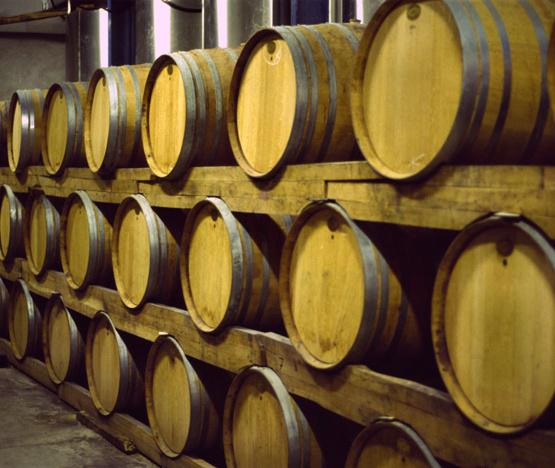 Weinabo-Abothek-Februar-Marques-de-Velilla-Ribera-del-Duero-Roble-2017-Eichenfaesser-Barriques_web