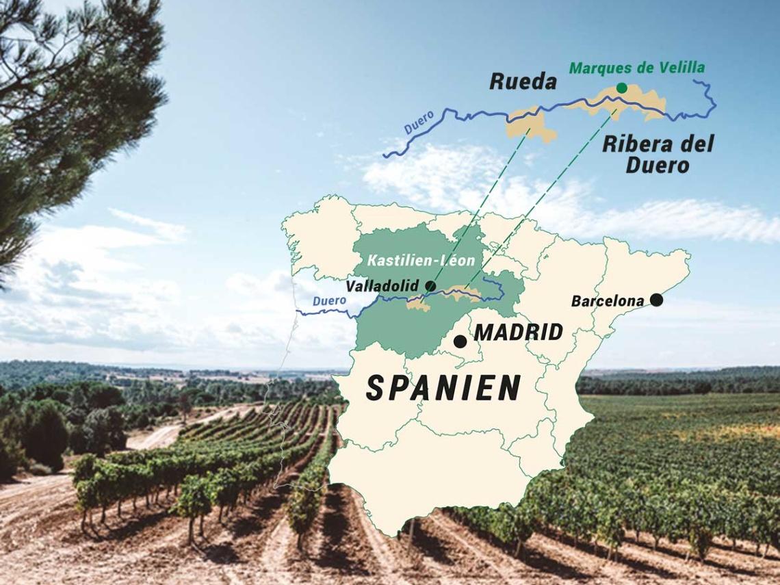 Weinabo-Abothek-Februar-Marques-de-Velilla-Verdejo-Rueda-Ribera-del-duero-Weingarten-Karte_web