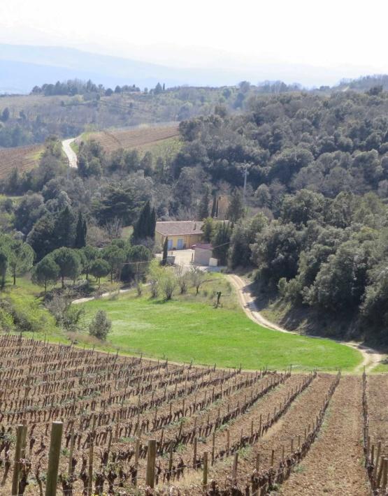 Weinabo-Abothek-Wein-Kistl-Maerz-2020-Limoux-Domaine-de-la-Coume-Lumet-Weingut-1200x1536-shop-web