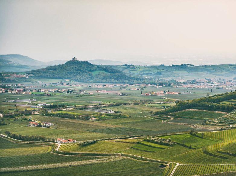 Weinabo-Abothek-Wein-Kistl-Juni-2020-Italia-si-frecce-tricolori-Verona-Italien-Fasoli-Gino-Blogpost_web