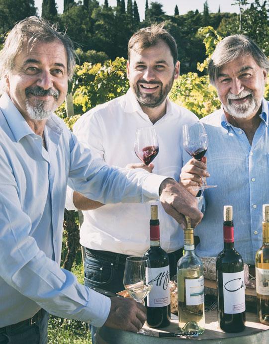 Weinabo-Abothek-Wein-Kistl-Juni-2020-Italia-si-frecce-tricolori-Verona-Italien-Fasoli-Gino-Borgoleto-Soave-DOC-2019-Fasoli-Family-shop_web