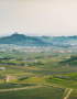 Weinabo-Abothek-Wein-Kistl-Juni-2020-Italia-si-frecce-tricolori-Verona-Italien-Fasoli-Gino-Borgoleto-Soave-DOC-2019-Valle-d-illasi-shop_web