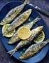 Weinabo-Abothek-Wein-Kistl-September-2020-der-Blick-zurueck-ins-Sommerglueck-Alentejo-Portugal-HMR-Pousio-Selection-Branco-2019-Bild-Fisch-shop_web