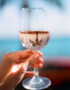 Weinabo-Abothek-Wein-Kistl-September-2020-der-Blick-zurueck-ins-Sommerglueck-Alentejo-Portugal-HMR-Pousio-Selection-Rose-2019-Bild-Palme-shop_web