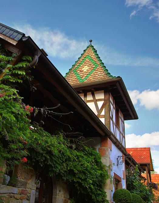 Weinabo-Abothek-Oktober-2020-Pfalz-Mario-Zelt-Riesling-2019-Weingut-shop_web