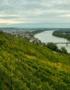 Weinabo-Abothek-Salomon-Undhof-Krems-Stein-Gemischter-Satz-Fuenferl-Donau-Foto-Florence-Steiger-web