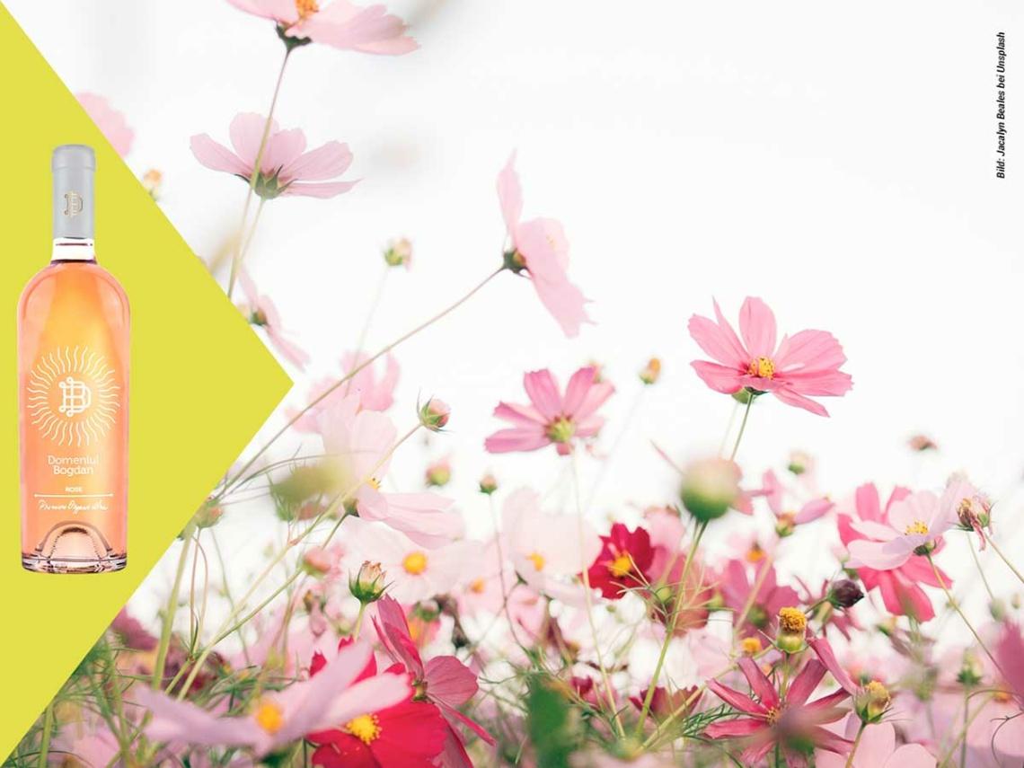 Weinabo-Abothek_Mai-2021_Rumaenien_Blog-Bilder_Rose_web