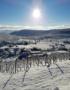 Weinabo-Abothek-Frankreich-Pfaffenheim-Elsass-Moltes-Pinot-Blanc-AOC-Alsace-2019-Winter-web