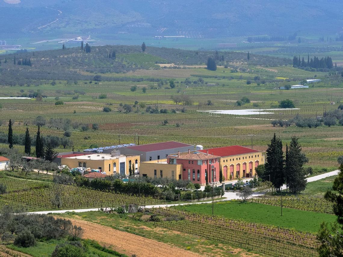 Weinabo-Abothek-Griechenland-Peloponnes-Lafazanis-Geometria-beitrag-web